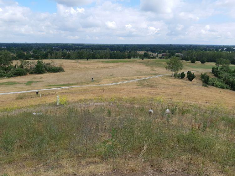 Het uitzicht vanaf de berg op de golfbaan. De berg wordt begraasd door schapen.