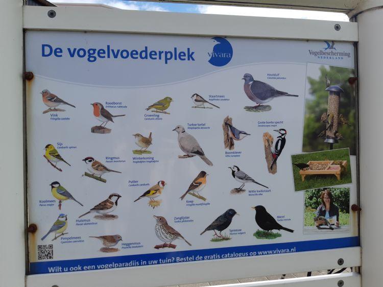 Op De Golfhorst zijn tal van vogelsoorten te zien.