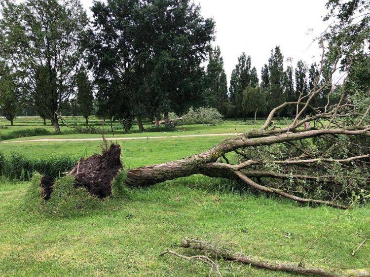 Bron foto: Golfbaan Waterland - Amsterdam op Facebook.